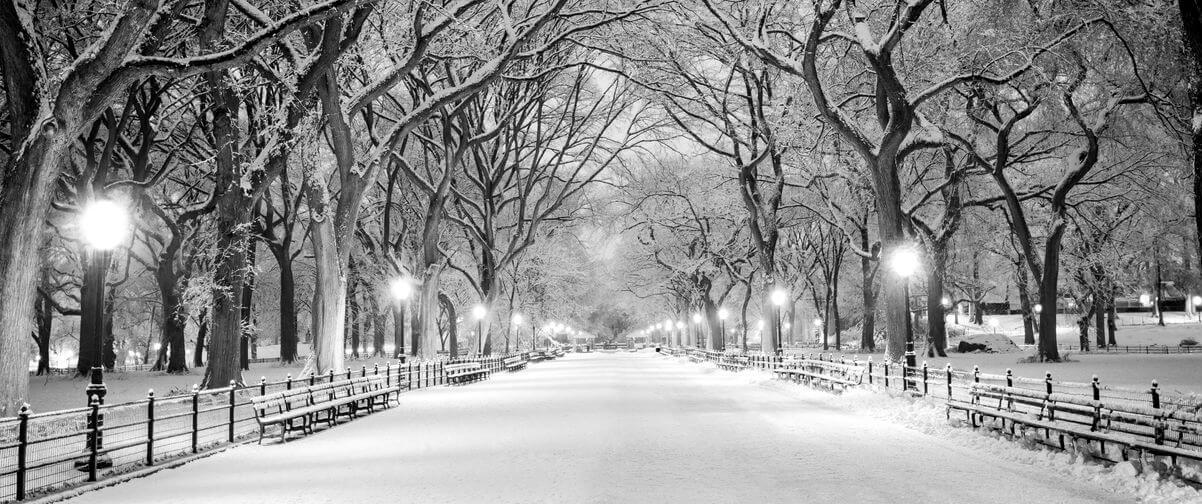 Guía Nueva York, Invierno Nueva York