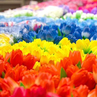 Guía Amsterdam, Tulips, Bloemenmarkt