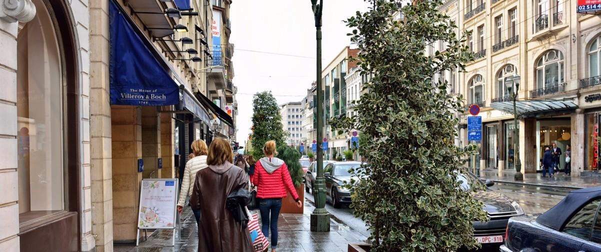 Guía Bruselas, Avenida Luisa
