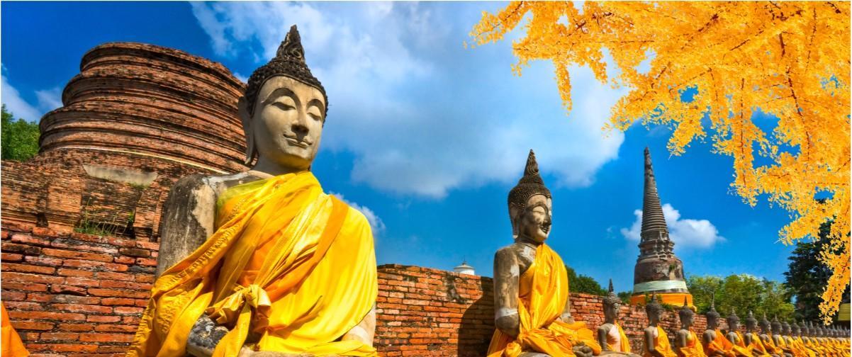 Guía Bangkok, Buddha Statue Ayutthaya, Bangkok