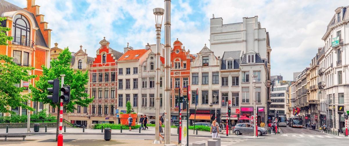 Guía Bruselas, Vista de Bruselas