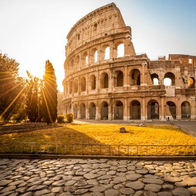 Guía Roma, Coliseo Roma