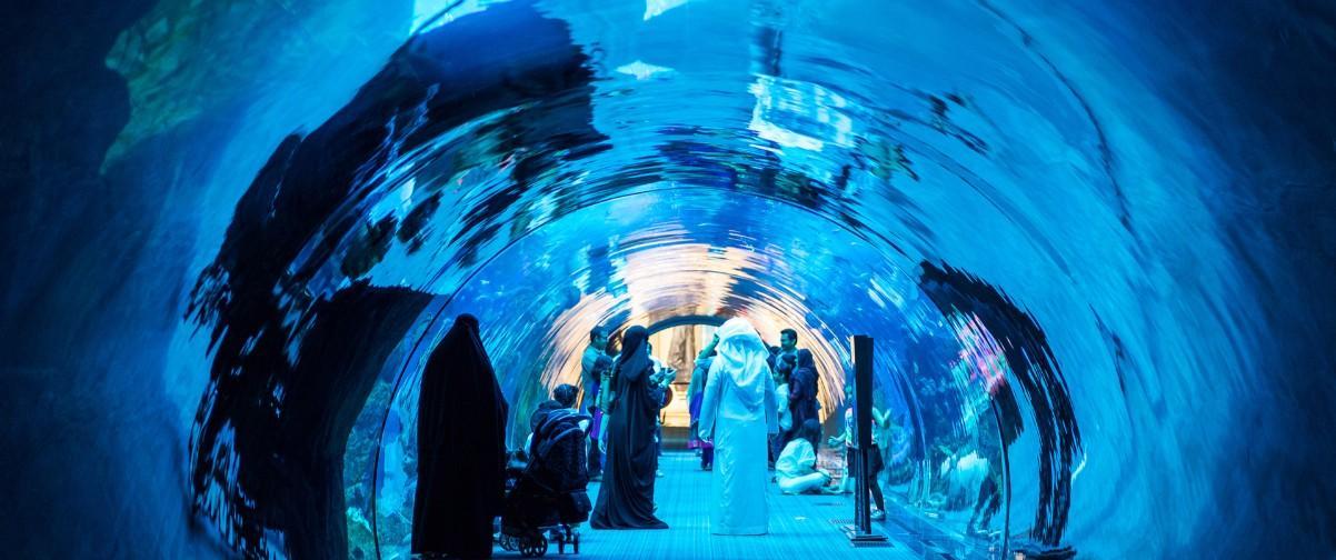 Delfinario Dubai
