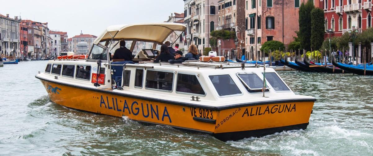 Guía Venecia, Embarcación Alilaguna