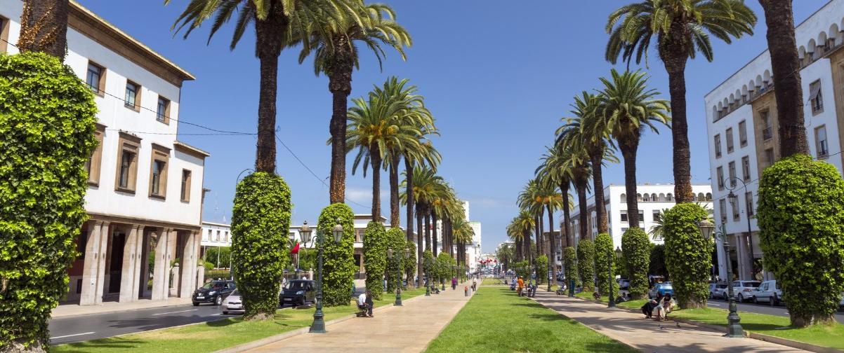 Guía Marrakech, Avenida Mohammed V