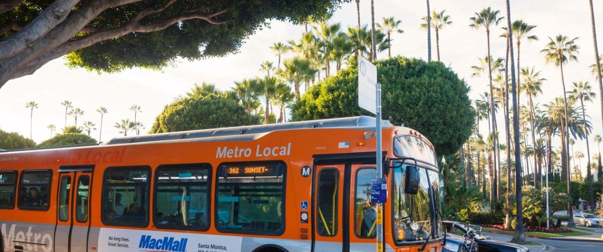Guía Los Ángeles, Bus