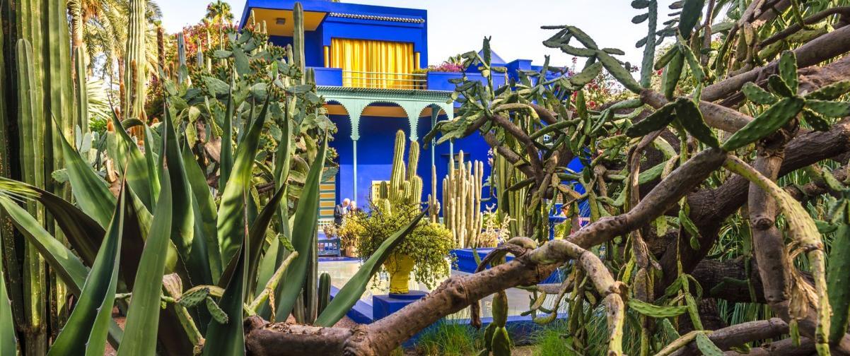 Guía Marrakech, Museo Jardines Majorelle