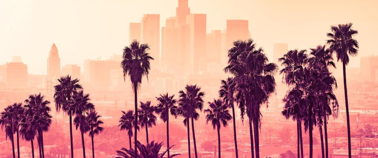 Guía Los Ángeles, Palmeras sobre fondo con rascacielos