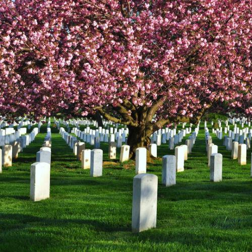 Guía Washington, Cementerio de Arlington