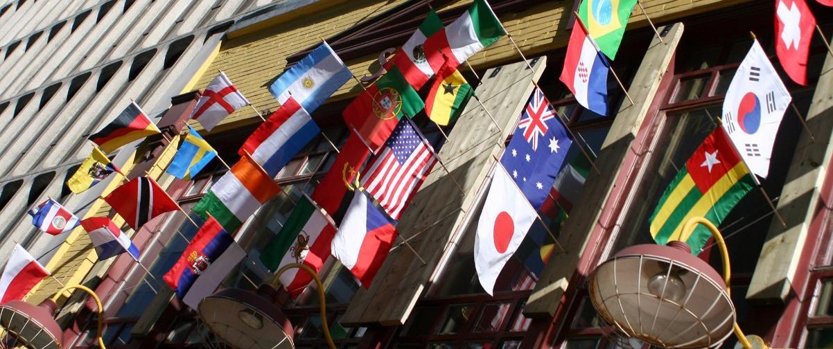 Guía Toronto, Banderas Multicultural