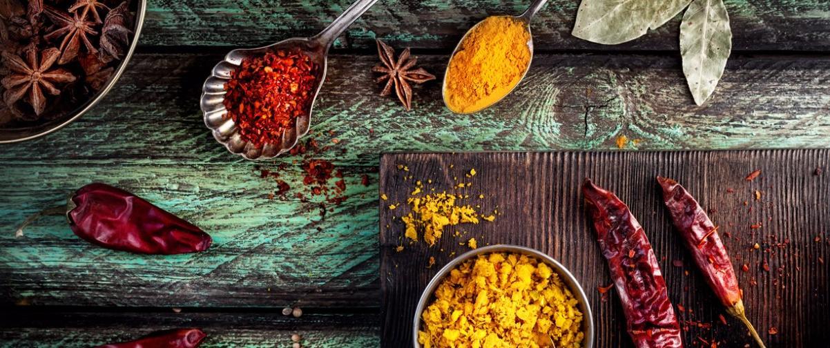 Guía Nueva Delhi, Gastronomía india