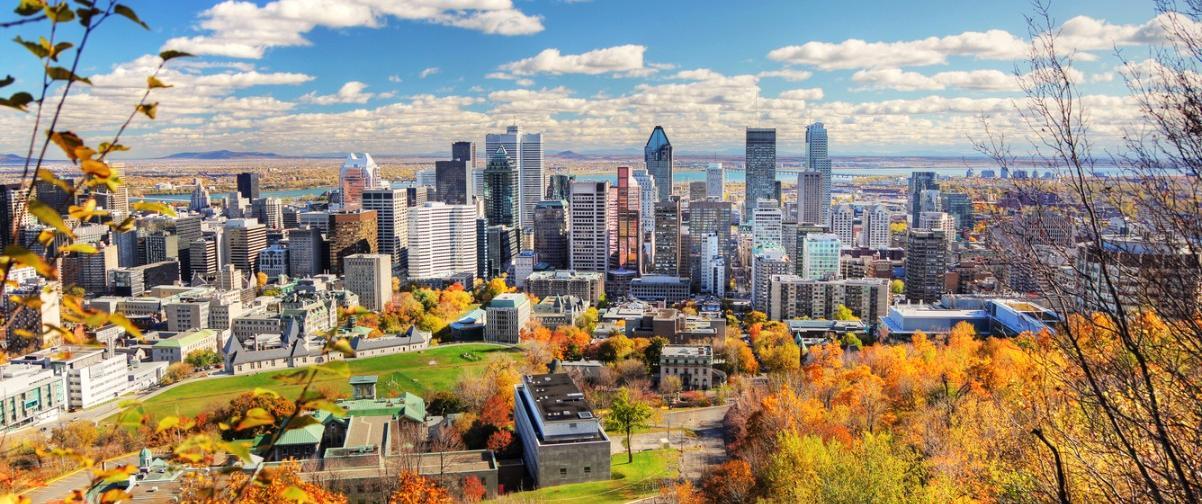 Guía Montreal, Panorámica