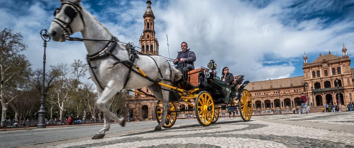 Guía Sevilla, Paseando en calesa