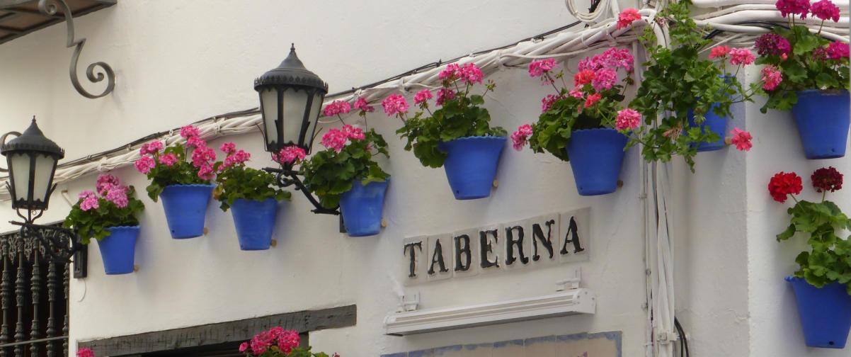 Guía Córdoba, Taberna típica andaluza