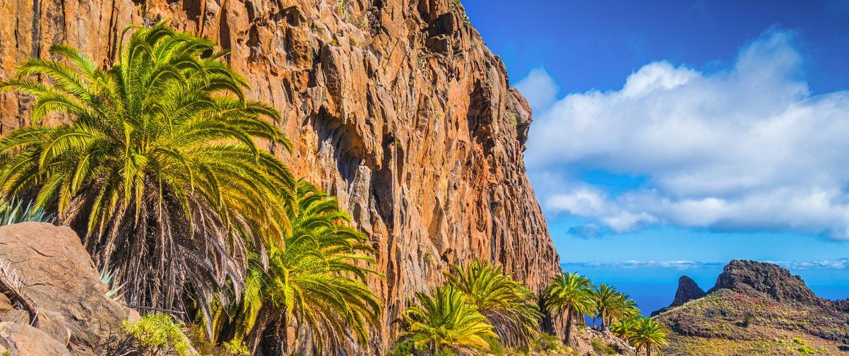 Guía Gran Canaria, Clima tropical
