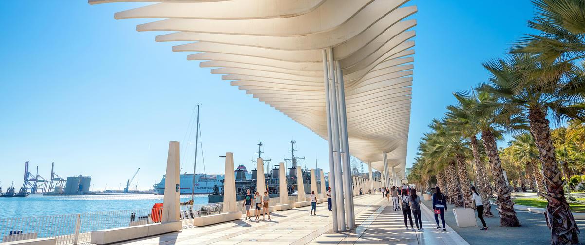 Guía Málaga, Palmeral