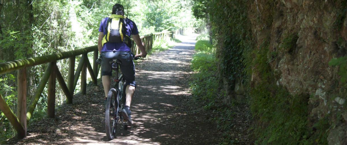 Guía Oviedo, Transporte en bicicleta