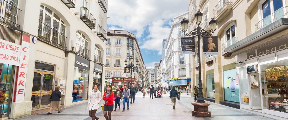 Guía Zaragoza, Calle comercial Zaragoza