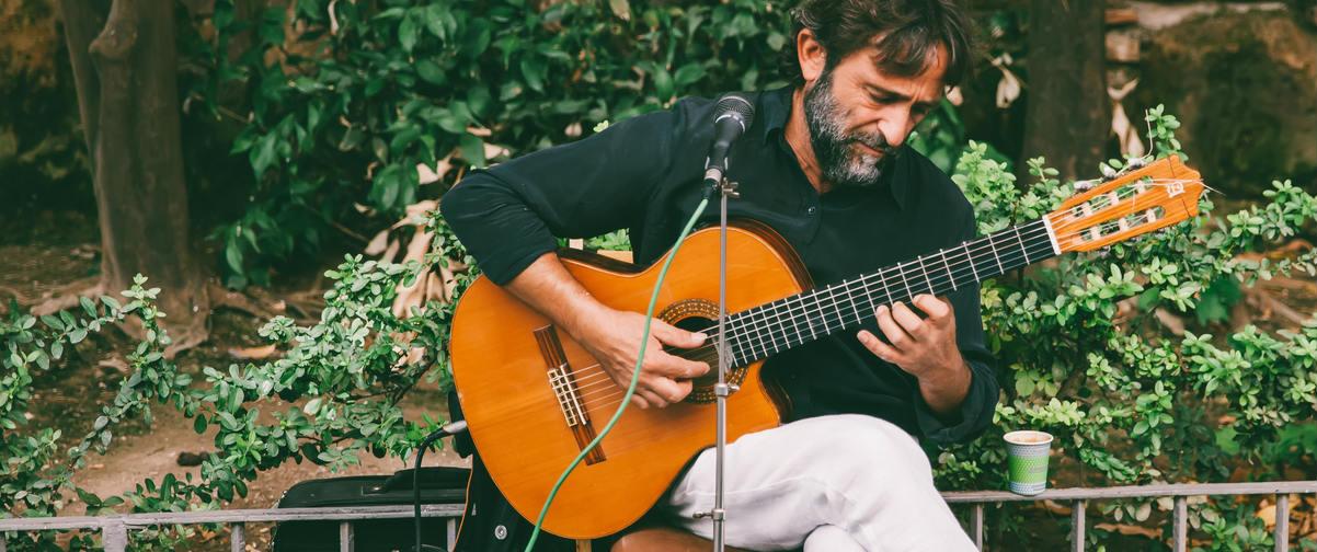 Guía Granada, Guitarra andaluza