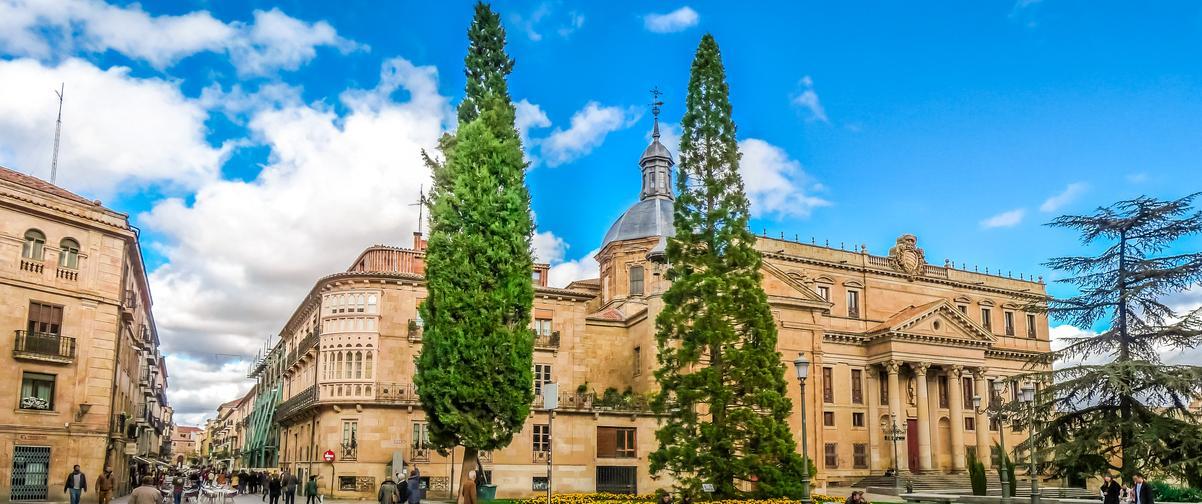 Guía Salamanca, Catedral